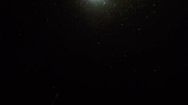 Slow motion of a falling snow illuminated by a street light