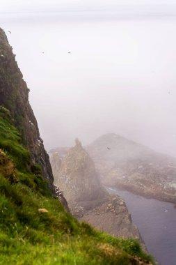 Mystical foggy cliffs of Mykines island. Faroe Islands.