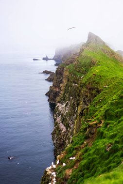 Green mountains and cliffs with nesting birds above Atlantic Ocean. Mykines, Faroe Islands.