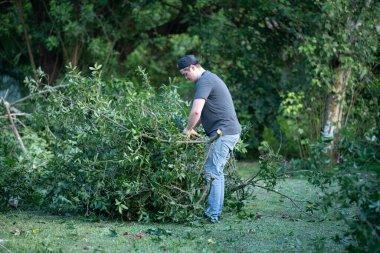 man clears fallen tree limbs from hurricane damage