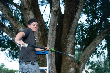 tree worker is on a ladder with a pole saw and ready to trim you