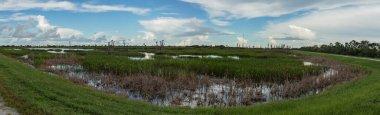 blue skies in the wetlands panorama