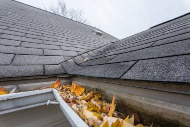 gutters are full of fall leaves and ice