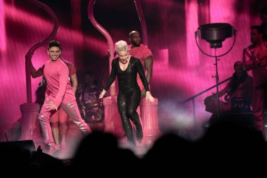 Detroit, Michigan, USA - 04.26.2019: Pink performing live at the Little Caesar's Arena of Detroit with special guest Julia Michaels