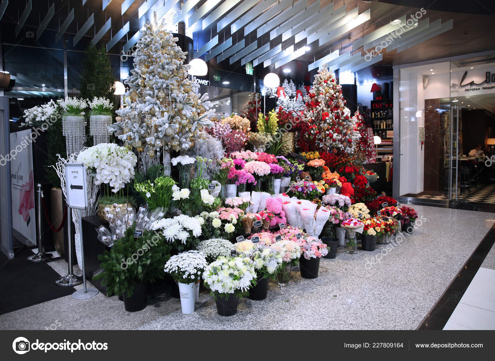 Christmas Showcase Chic Flower Shop Decorated Large