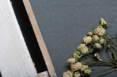 Dried beige roses. Against the background of gray fabric rough texture. Nearby is a wooden box, painted in white.