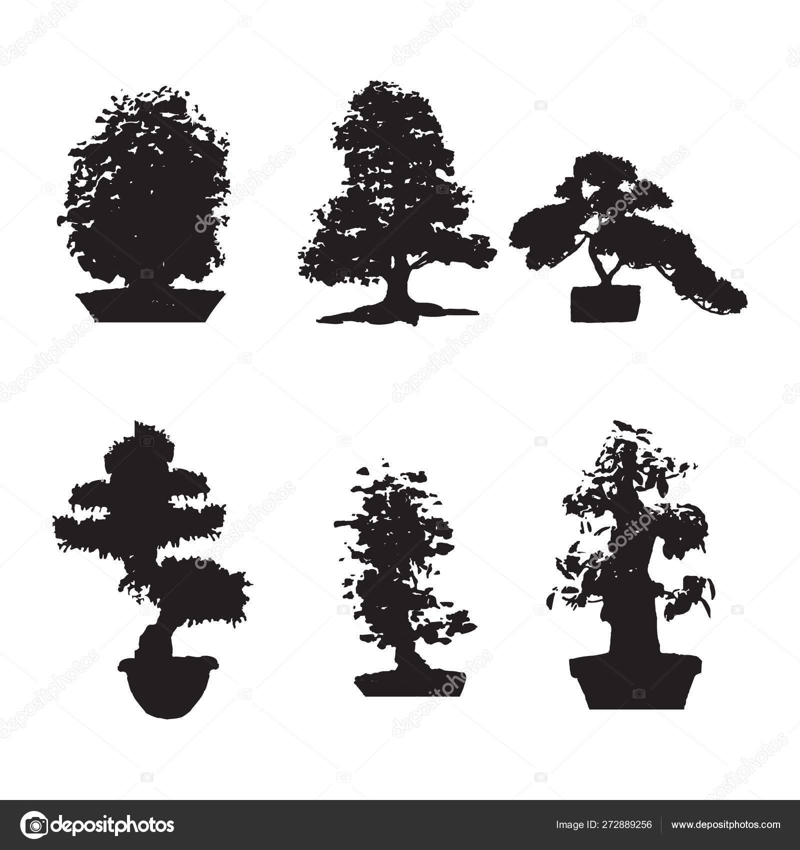 Set Of Six Black Silhouettes Bonsai On An Isolated Background Miniature Trees Gorshkah Yu Potted Trees Japanese Tree Stock Vector C Mikrostoker 272889256