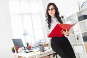 schönes junges Mädchen steht im Büro, stützt sich auf Schreibtisch und blättert durch rote Ordner mit Dokumenten.