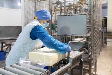 An employee in a blue form packs a large piece of oil into a transparent film on the production line . The production process at the dairy plant stock vector