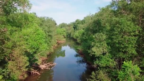 Let nad říčním lesem při západu slunce. Letní krajina přírody Ruska. S kmeny stromů rostoucími na březích. Moskevská oblast, řeka Istra. Letící dron. Rozlišení 4K