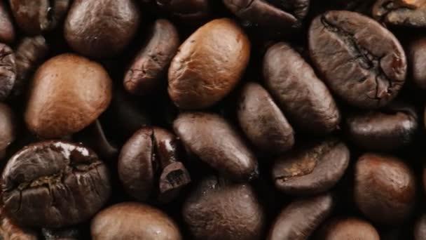 Bio Coffee Brazil beans