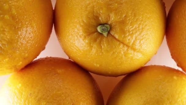Bio Oranges for juice