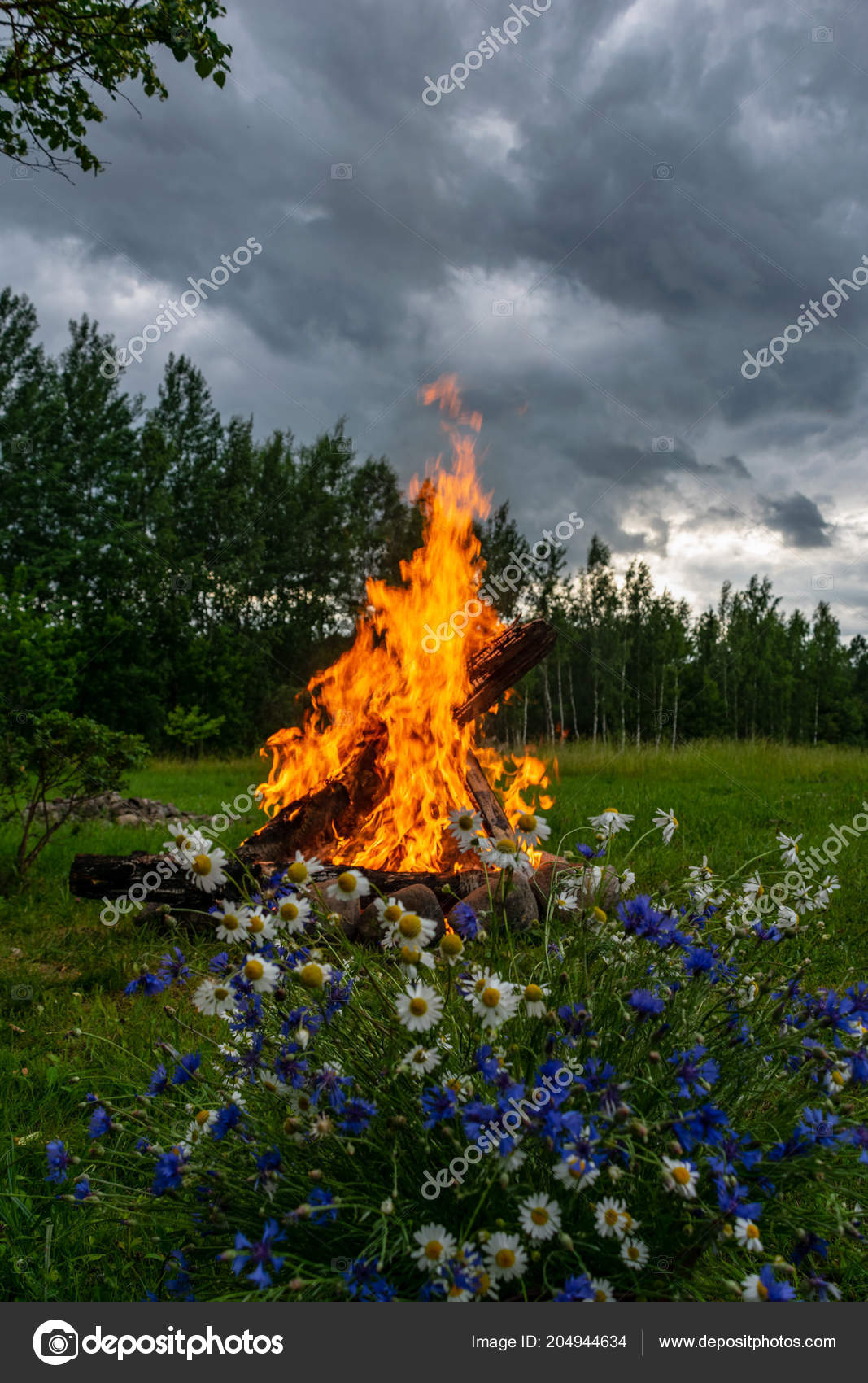 Woods Burning Fireplace Warm Heat Fire Darkness Camping Nature