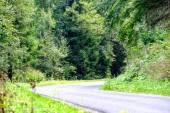 prosté venkovské štěrková cesta v létě v lesní krajině se stromy kolem a mraky na obloze