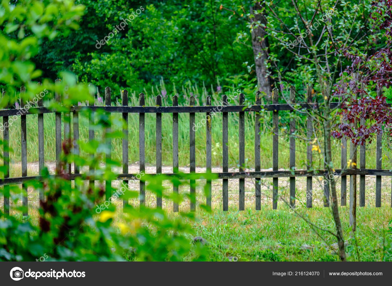 Houten Hekwerk Tuin : Oude houten hek tuin het platteland met ochtends licht groen
