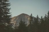 ranní světlo nad vrcholky hor a lesů v horách Tatra na Slovensku