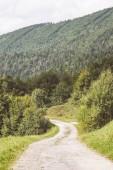 Fotografie prosté venkovské štěrková cesta v létě v krajině se stromy a okolí