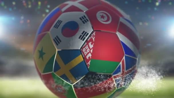 belarus flag on a soccer ball football in stadium