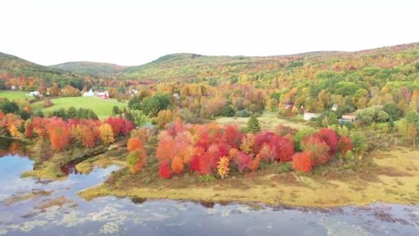 letecký pohled na pole s podzimními stromy