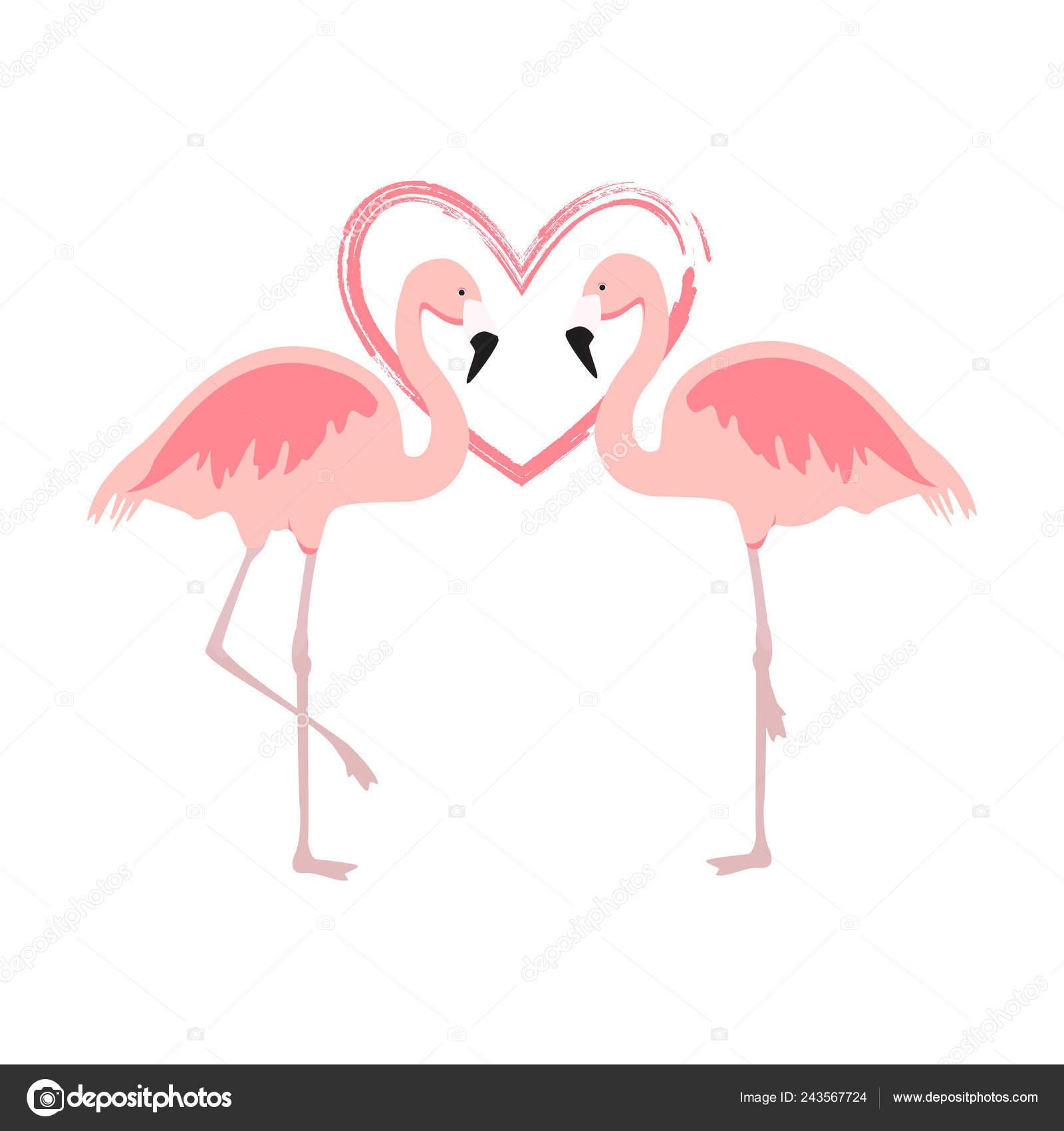 Roze Flamingo dating