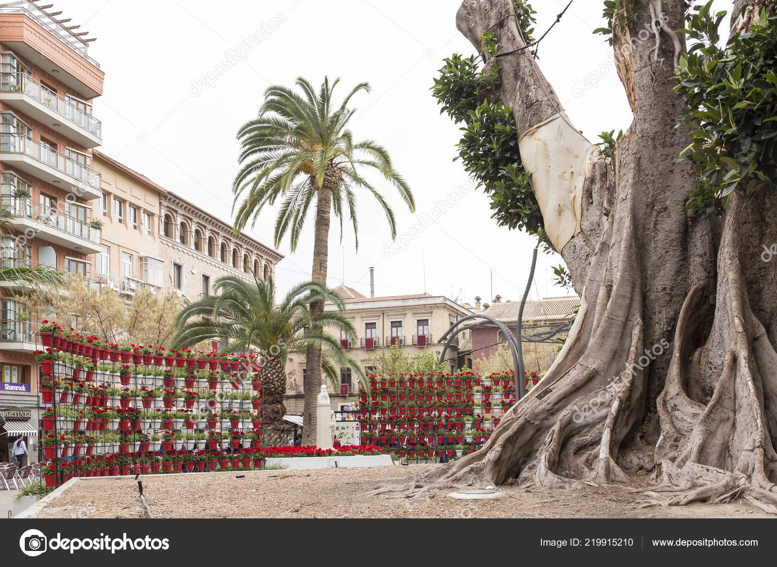 Plaza Santo Domingo Murcia Spring Festivities 2018 Structure Pots