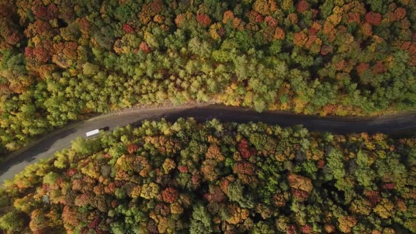 Aerial View of Nature Countryside and Car Driving Through Autumn Colors Forest