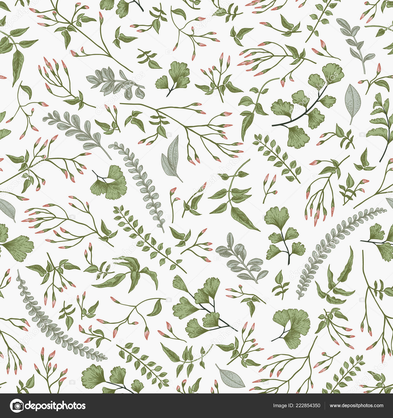 Seamless Floral Pattern Vintage Style Leaves Herbs Botanical