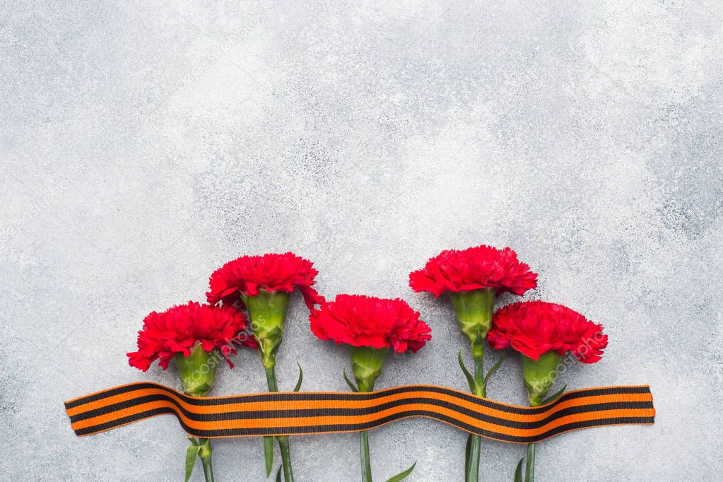 Red carnations and St. George ribbon on a concrete background. Symbol may 9, victory day Copy space