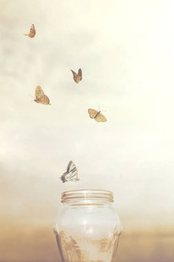 freedom and dreamy concepts for a group of prisoners butterflies in a vase