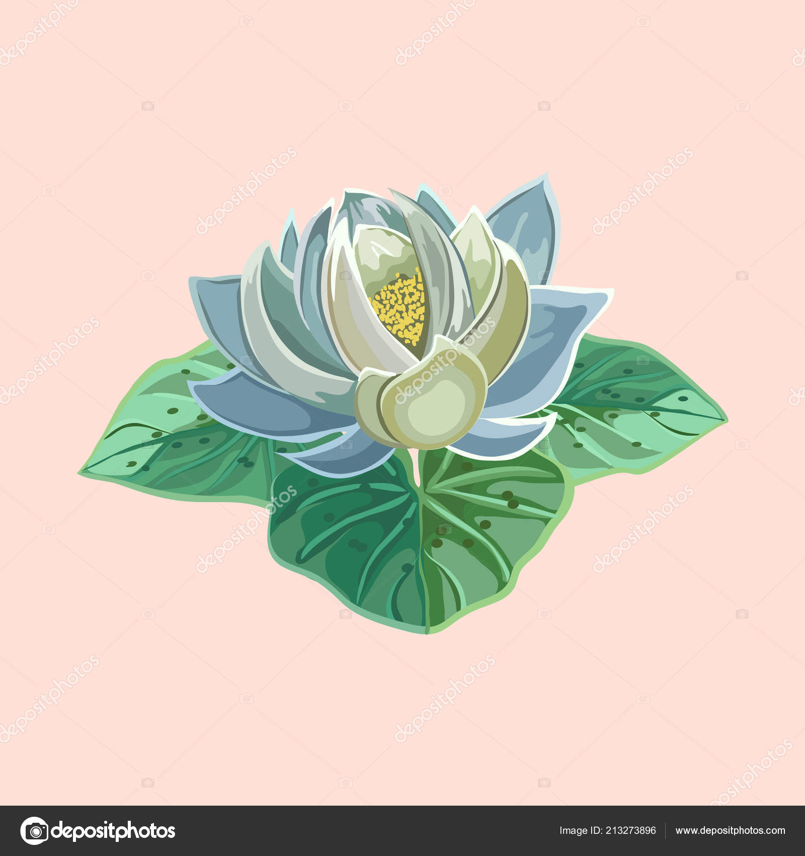 blue lotus flower with green leaves close-up — Stock Vector ...