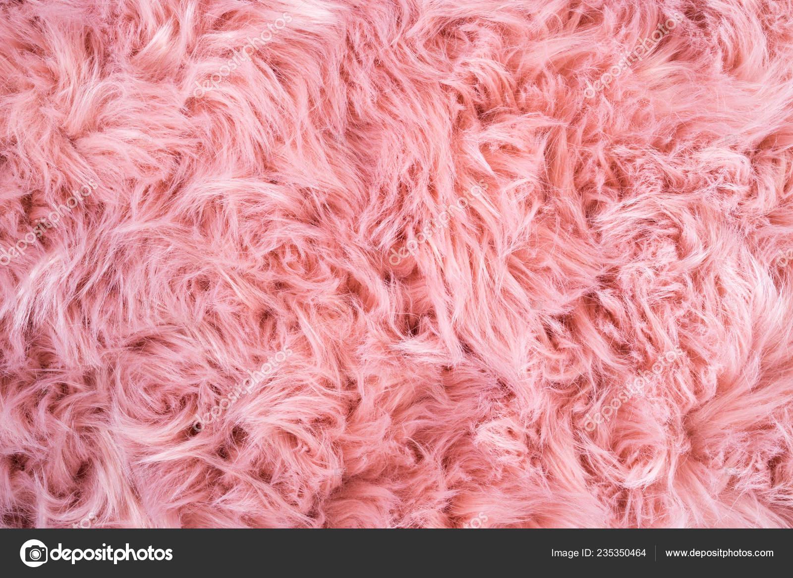 Pelle Pecora Rosa Sfondo Reticolo Della Pelliccia Struttura Delle
