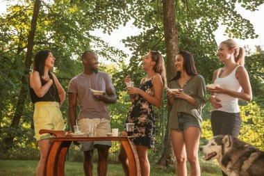 Gün batımında barbekü yemeğinde bira yiyip içen mutlu arkadaşlar
