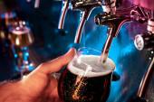 Barmana nalijí velké pivo, portýra, silné pivko v kohoutku