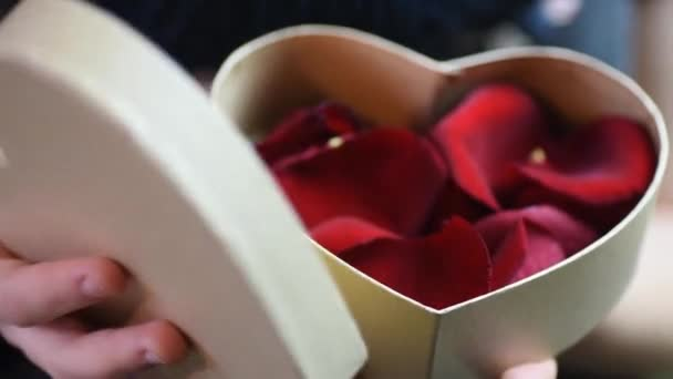 red gift beautiful day present valentine