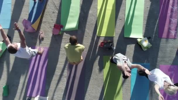 aerial view on big group of adults attending a yoga class outside in park