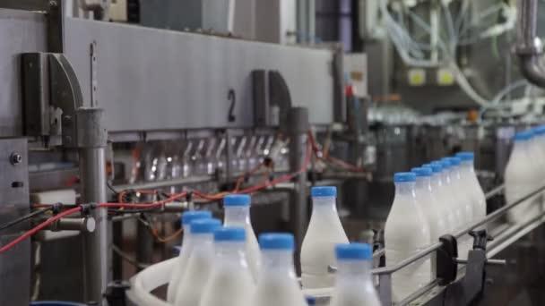 Verpackungsprozess der Milchproduktion. weiße Plastikflaschen auf Förderband transportiert
