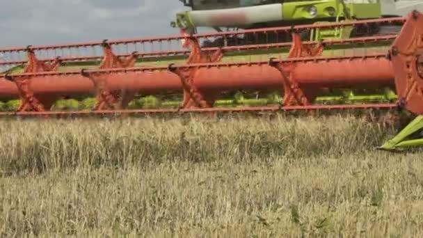 Pomalý pohyb Sklízeče farmářské kombajn pracující na velkém poli, Sklizátor na poli, zelený kombain pracující