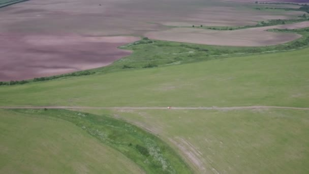 Aerial view of Truck transporting freshly harvested agricultural plants on field.
