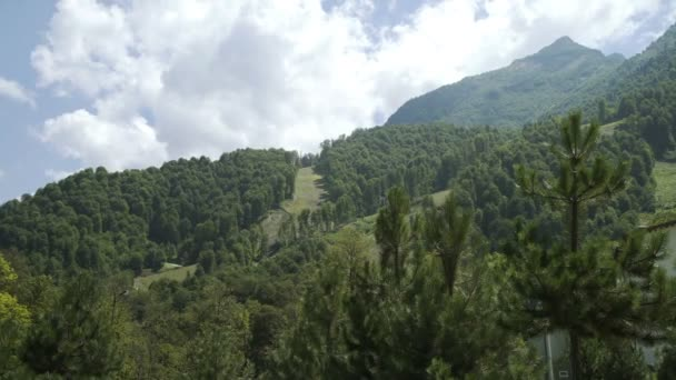 Mountains covered rainforest, trees. Caucasus Mountain landscape with mountain peaks covered with forest