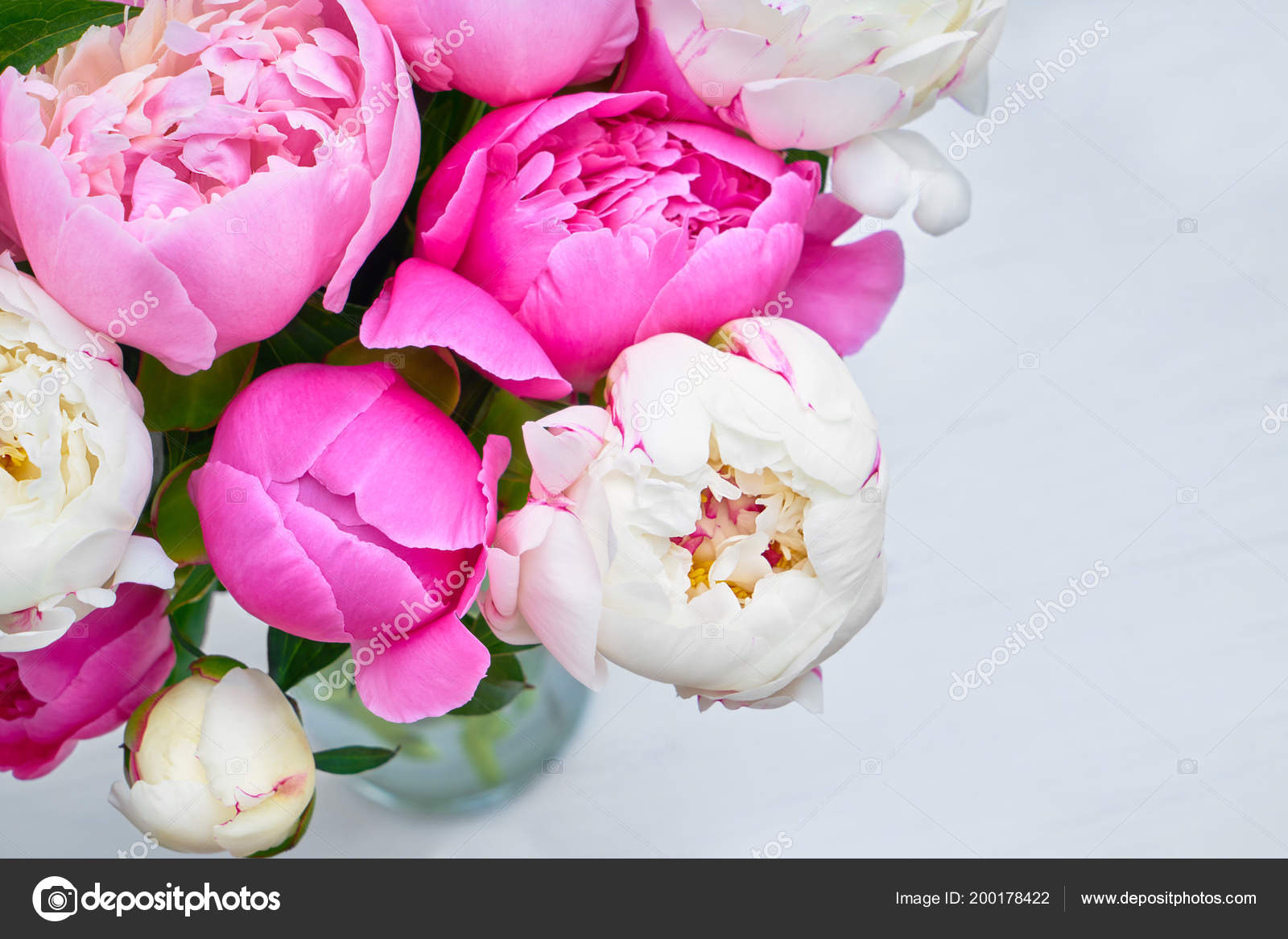 Bouquet Pink White Peony Flowers Background Top View Copy Space Stock Photo C Laima Gri 200178422