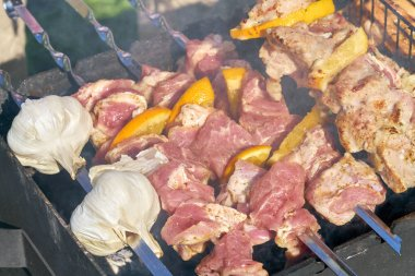 Grilled kebab and garlic cooking on metal skewer. Roasted meat cooked at barbecue. Picnic, street food