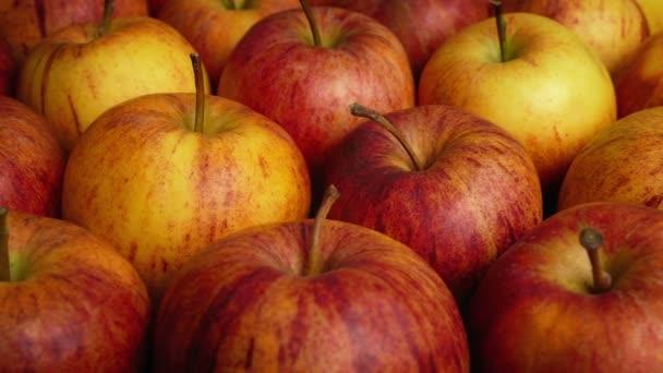 Passing Lots Of Ripe Apples