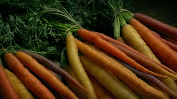 Different Colored Fresh Carrots