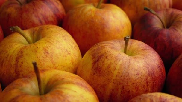 Prochází mnoha jablka Closeup