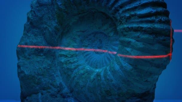 Ammonite fosilních naskenované s laserem