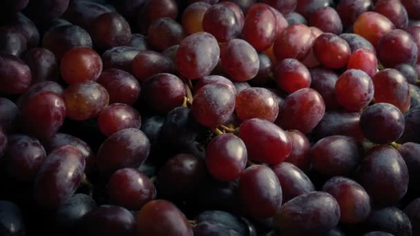 Piles Of Red Grapes