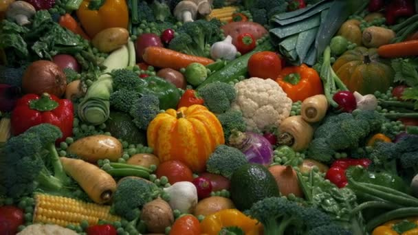 Huge Pile Of Fresh Wet Vegetables