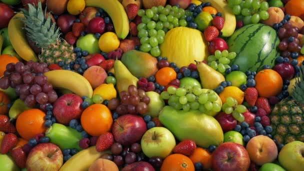 Plody světa klouzavý záběr
