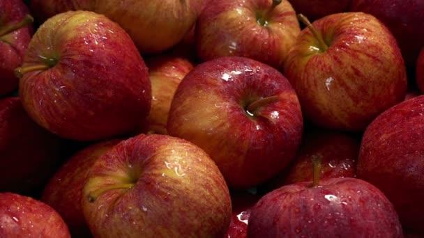 Washed Apples Pile Moving Shot
