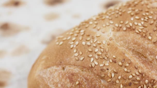 fresh delicious baked bread and buns at the bakery, food concept background